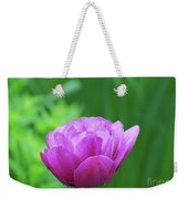 Gorgeous Blooming And Flowering Dark Pink Parrot Tulip Weekender Tote Bag