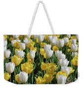 Gorgeous Blooming Field Of White And Yellow Tulips Weekender Tote Bag