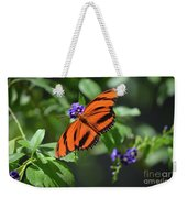 Gorgeous Close Up Of An Oak Tiger Butterfly In Nature Weekender Tote Bag