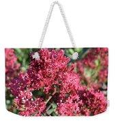 Gorgeous Cluster Of Red Phlox Flowers In A Garden Weekender Tote Bag