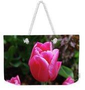 Gorgeous Dark Pink Tulip Blooming In A Garden Weekender Tote Bag