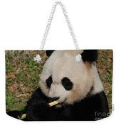 Gorgeous Face Of A Giant Panda Bear With Bamboo Weekender Tote Bag