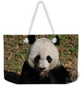Gorgeous Face Of A Panda Bear Eating Bamboo Weekender Tote Bag