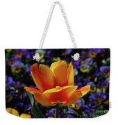 Gorgeous Flowering Yellow And Red Blooming Tulip Weekender Tote Bag