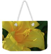 Gorgeous Flowering Yellow Daylily Blooming In A Garden Weekender Tote Bag
