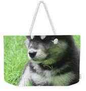 Gorgeous Fluffy Black And White Husky Puppy In Grass Weekender Tote Bag