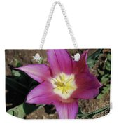 Gorgeous Light Purple Tulip With Yellow Stamen Weekender Tote Bag