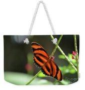 Gorgeous Orange And Black Oak Tiger Butterfly Weekender Tote Bag