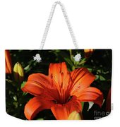 Gorgeous Pretty Orange Lily Flower Blooming In A Garden Weekender Tote Bag