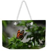 Gorgeous View Of An Oak Tiger Butterfly In The Spring Weekender Tote Bag