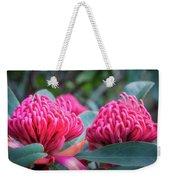 Gorgeous Waratah -floral Emblem Of New South Wales Weekender Tote Bag