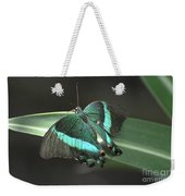 Gorgoeus Close Up Of This Emerald Swallowtail Butterfly  Weekender Tote Bag