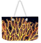 Gorgonian Coral Fan Weekender Tote Bag