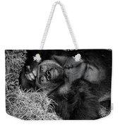 Gorilla Pose Weekender Tote Bag
