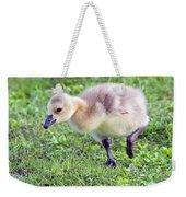 Gosling Weekender Tote Bag