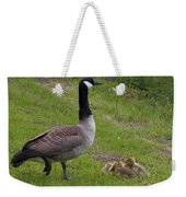 Goslings With Mother Goose Weekender Tote Bag