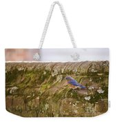 Governor's Palace Bluebird Weekender Tote Bag