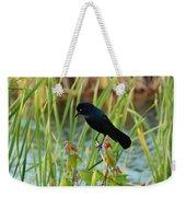 Grackle Hiding In Marsh Weekender Tote Bag
