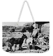 Grand Canyon: Donkeys Weekender Tote Bag