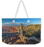 Grand Canyon Old Tree Weekender Tote Bag