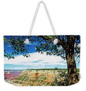 Grand Canyon View From South Rim Overlook Weekender Tote Bag