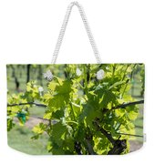 Grapevine In Early Spring Weekender Tote Bag