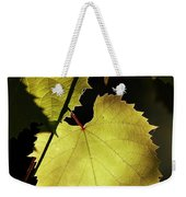 Grapevine In The Back Lighting Weekender Tote Bag by Michal Boubin