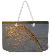 Grassflowers In The Setting Sun Weekender Tote Bag