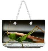 Grasshopper Posing Weekender Tote Bag