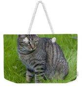 Gray Cat In Vivid Green Grass Weekender Tote Bag