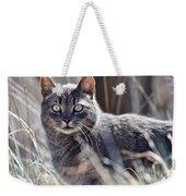 Gray Cat In Woods Weekender Tote Bag