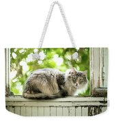 Gray Cat Sitting On A Balcony Weekender Tote Bag