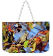 Gray Catbird Framed By Fall Weekender Tote Bag