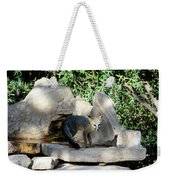 Gray Fox 4 Weekender Tote Bag