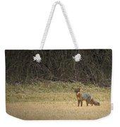 Gray Fox In Lower Pasture Weekender Tote Bag