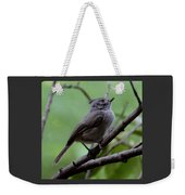 Gray Grey Bird 052814a Weekender Tote Bag