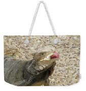 Gray Iguana Eating Lettuce With His Pink Tongue Sticking Out Weekender Tote Bag