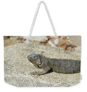 Gray Iguana Sunning And Resting On A Large Rock Weekender Tote Bag