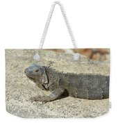 Gray Iguana With Long Talons Sitting On A Rock Weekender Tote Bag