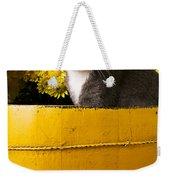 Gray Kitten In Yellow Bucket Weekender Tote Bag