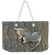Gray Squirrel - Sciurus Carolinensis Weekender Tote Bag