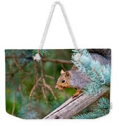 Gray Squirrel Pictures 93 Weekender Tote Bag