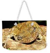 Gray Tree Frog Horizontal Weekender Tote Bag
