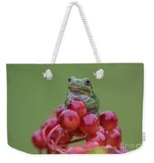 Gray Tree Frog Weekender Tote Bag