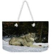 Gray Wolf 5 Weekender Tote Bag