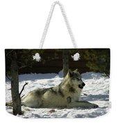 Gray Wolf 6 Weekender Tote Bag