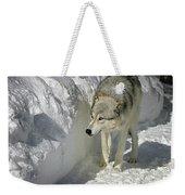 Gray Wolf 7 Weekender Tote Bag
