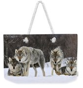 Gray Wolves Norway Weekender Tote Bag