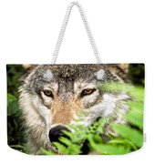 Gray Wolf In The Woods Weekender Tote Bag