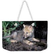Gray Wolf Pup With Prey Weekender Tote Bag